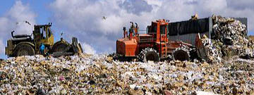 A large dumpster unloads trash while bulldozers move it at a sanitary landfill in Boise, Idaho. dumpster, sanitary landfill, landfill, dump, trash, garbage, boise, idaho, unload, bulldozer, machine, bird, seagull, gull, scavenger