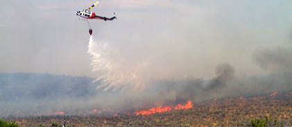PREVIOUS WILDFIRE IN THE AREA TO BE DEVELOPED