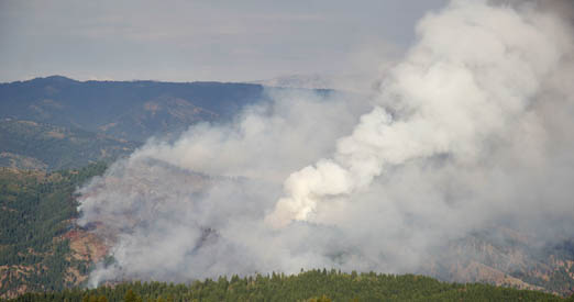 Overview of the Pine Creek fire from Bogus Basin area shows mosaic burn pattern and source of valley smoke. --JACOB MERRILL