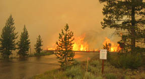 Only signs and fence were damaged when fire swept through F&G Sawtooth Hatchery.   PHOTOS COURTESY IDAHO FISH AND GAME
