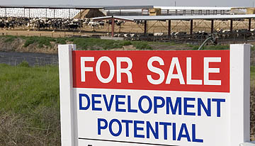 Farm sale sign.jpg