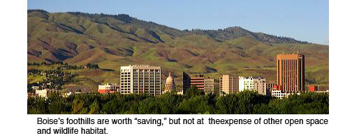 Foothills and City.jpg